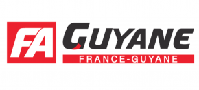 France-Antilles : Xavier Niel prévoit une offre de reprise de 115 à 135 salariés et un investissement de 10 millions d'euros