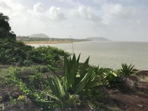 Pollution de l'air : Alerte Rouge en Guyane