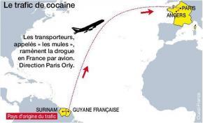 Une mission parlementaire contre le trafic de drogue en Guyane